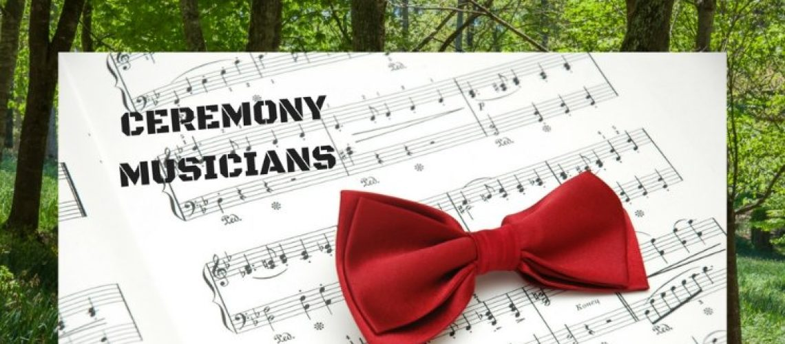 Ceremony and corporate Musicians - Brisbane